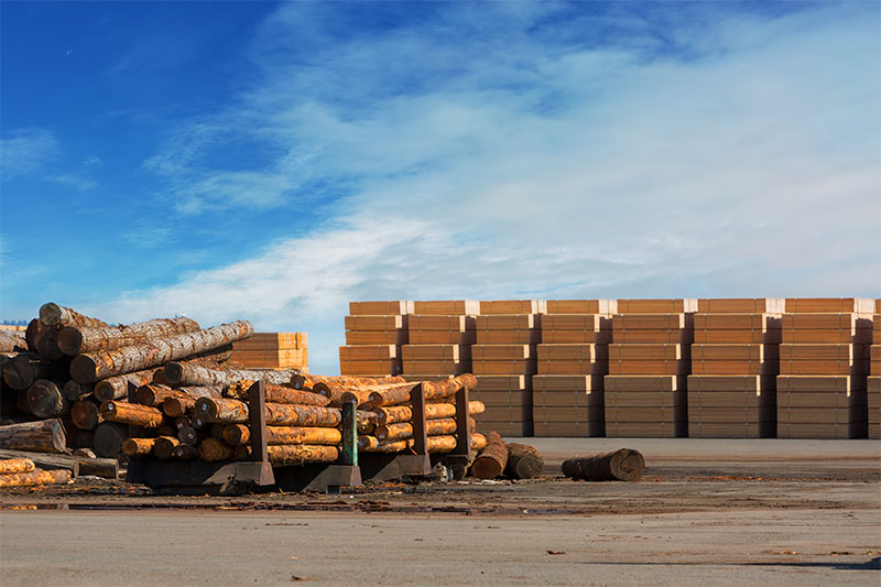 Stacks of log posts and wood boards at lumber yard